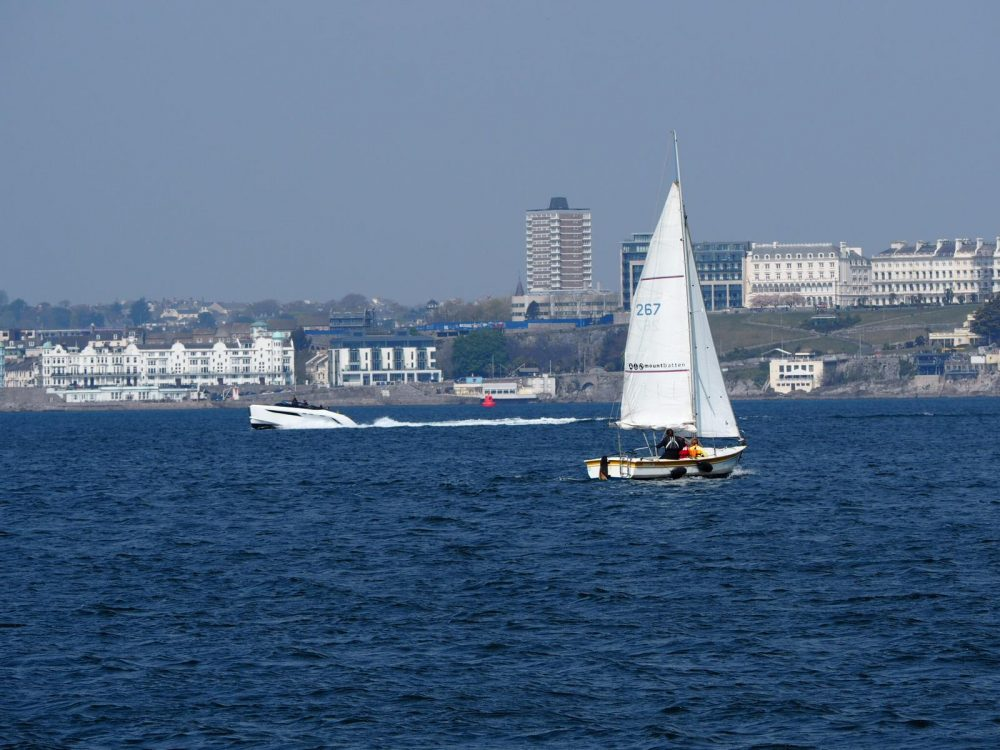 Seagrass restoration in Plymouth Sound