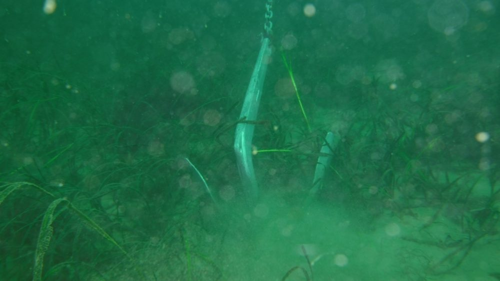 Anchor on seabed. Credit Jean Luc Solandt