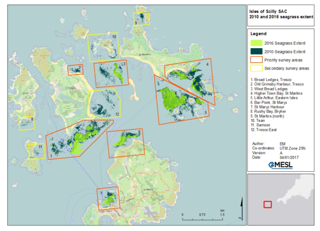 Map of seagrass - Isles of Scilly