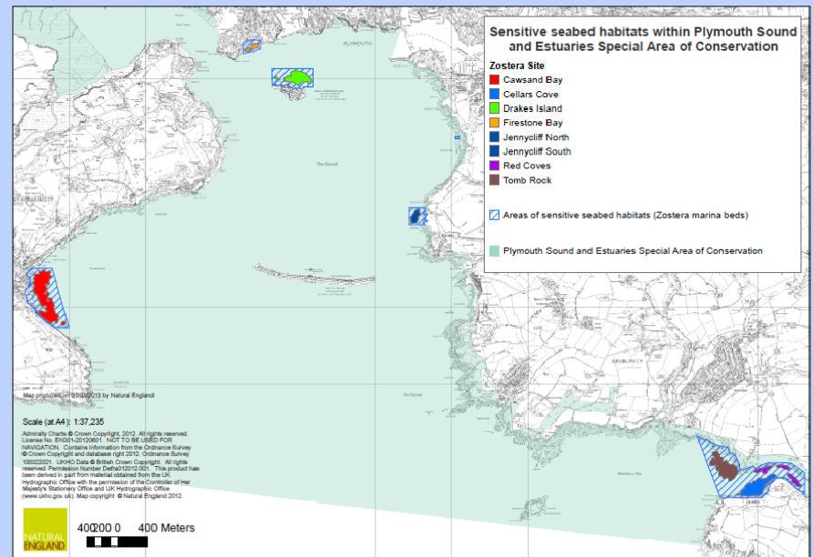Map of seagrass in Plymouth Sound Estuaries