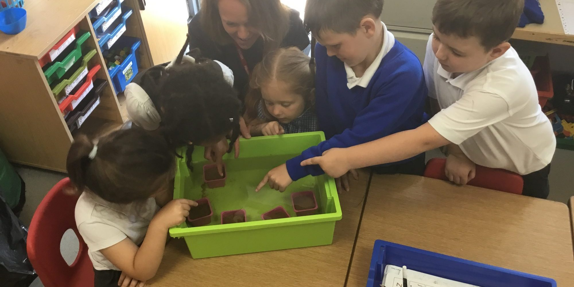 Year 1 children of Goosewell Primary proud of their seagrass seedling. Photo credit Goosewell Primary School